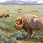 Sacred White Buffalo - 9x12 - oil - $350