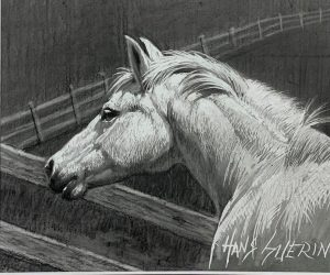 White Horse; 4.5x5.5 in; drawing; $375