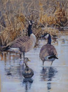 Canada Geese 2. 24x36 $1200. $3000 set