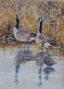 Canada Geese 3 24x36. $1200. $3000 set