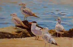 Gulls and Tern. 20x27. $900.