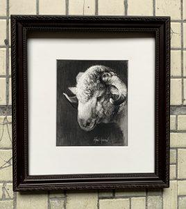 Woolly 5x4 $350